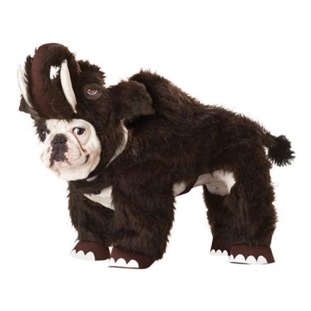 Mammut Hund Maskeraddräkt - Maskeradkalaset 40987c84670ce